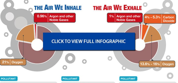 Air Oasis Infographic on Air Quality